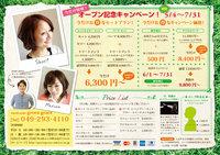 green-chira02.jpg